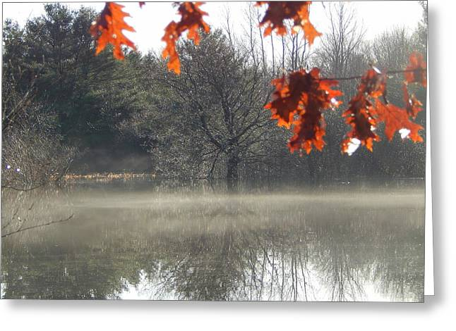 Annapolis Valley Greeting Cards - The Fringe of Fall Greeting Card by Karen Cook