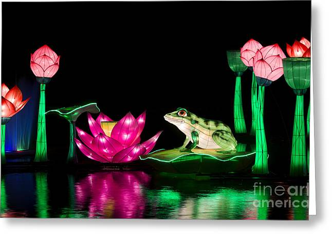 The Frog And Lotus Greeting Card by Tim Gainey