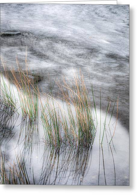 Wave Up Close Greeting Cards - The Frozen Edge Greeting Card by Christine Smart