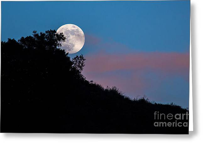 Moon Greeting Cards - The Full Moon Rises  Greeting Card by Mimi Ditchie