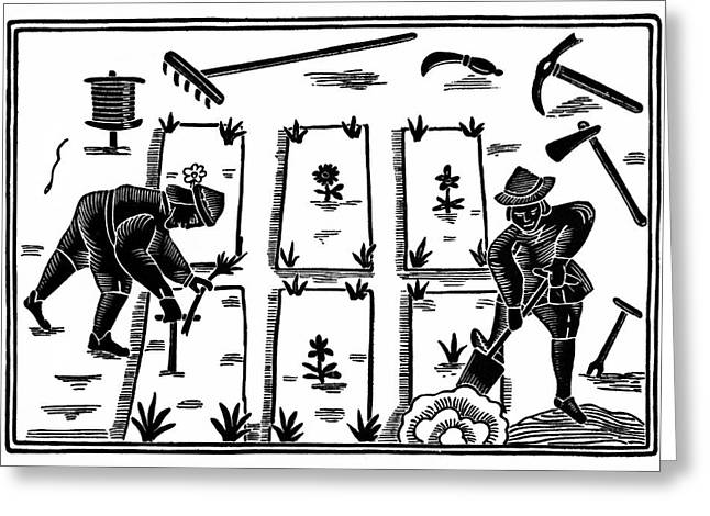 Garden Tools Greeting Cards - The Garden Labyrinth Woodcut 1577 Greeting Card by Daniel Hagerman