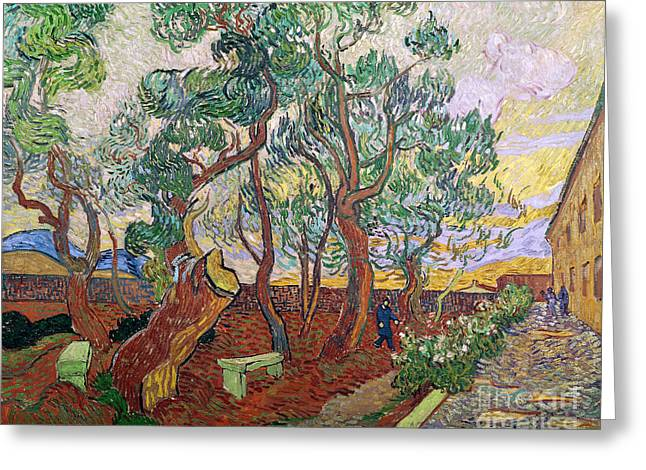 St Remy Greeting Cards - The Garden of St Pauls Hospital at St. Remy Greeting Card by Vincent Van Gogh