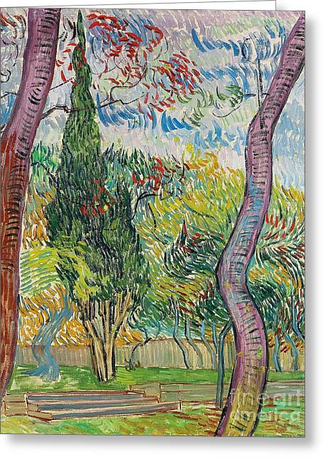 Red Leaves Greeting Cards - The Garden of St Pauls Hospital Greeting Card by Vincent van Gogh