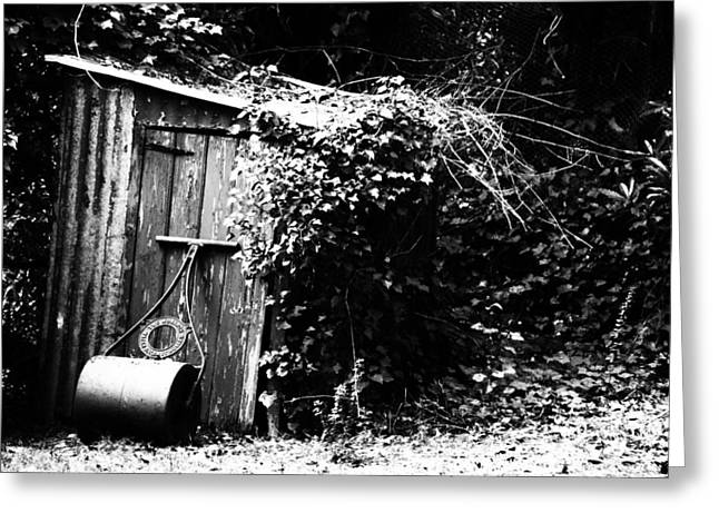 Garden Shed Greeting Cards - The Garden Shed Greeting Card by Douglas Barnard