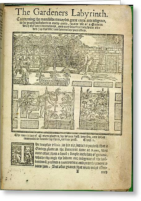 The Gardeners Labyrinth Greeting Card by British Library