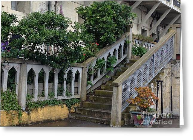 Alcatraz Greeting Cards - The Gardens at the Rock Greeting Card by Christy Gendalia