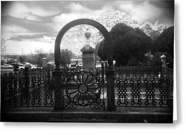 Historic Cemetery Greeting Cards - The Gate Greeting Card by Paul Anderson