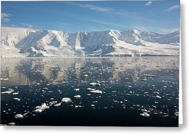 The Gerlache Strait Greeting Card by Ashley Cooper
