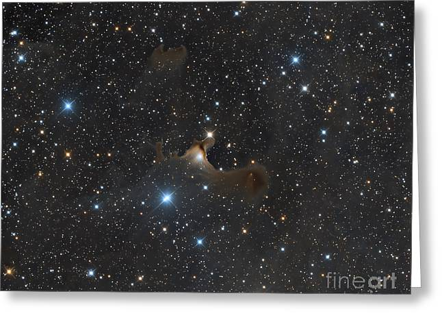 Interstellar Space Photographs Greeting Cards - The Ghost Nebula, Vdb 141 Greeting Card by Michael Miller