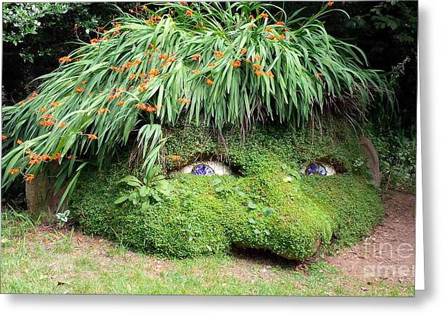 Own Thoughts Greeting Cards - The Giants Head Heligan Cornwall Greeting Card by Richard Brookes