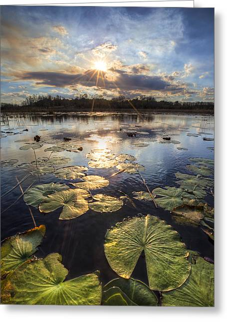 Foggy Beach Greeting Cards - The Glades Greeting Card by Debra and Dave Vanderlaan