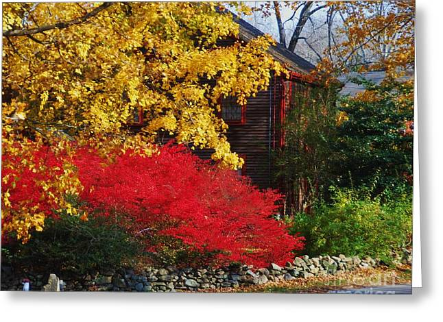 The Glory Of Fall 2 Greeting Card by Marcus Dagan