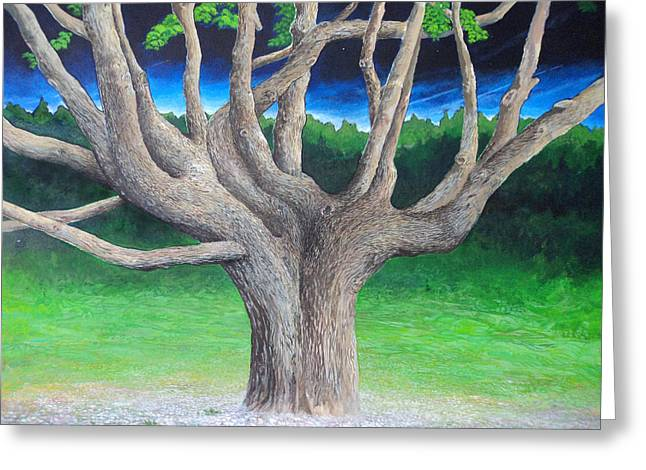 Gnarly Paintings Greeting Cards - The Gnarly Tree Greeting Card by Merv Scoble