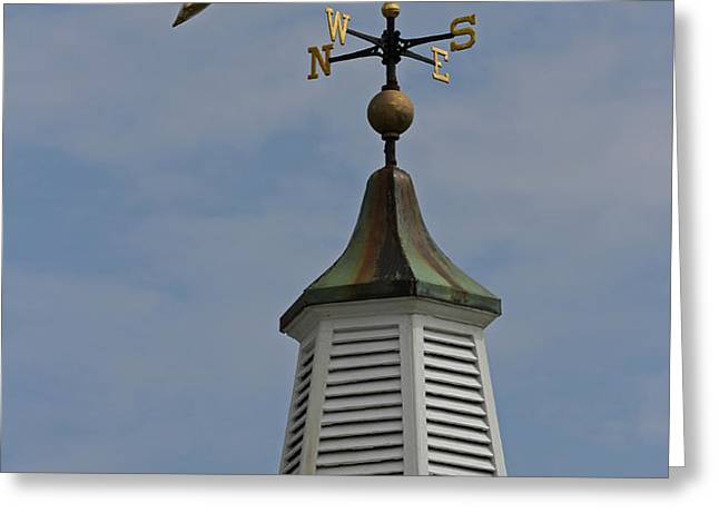 The Golden Dolphin Weathervane Greeting Card by Juergen Roth