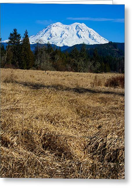 Lady Washington Greeting Cards - The Golden Fields of Mount Rainier Greeting Card by Roger Reeves  and Terrie Heslop