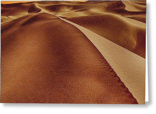 Nadine Greeting Cards - The Golden Hour Anza Borrego Desert Greeting Card by  Bob and Nadine Johnston