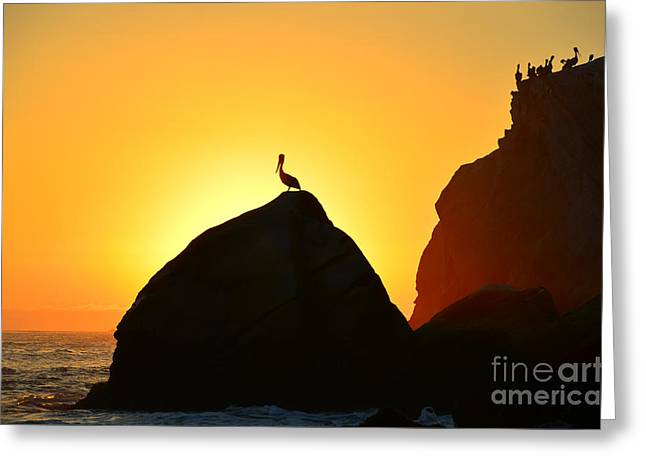 Beach Photography Greeting Cards - The Golden Hour Greeting Card by Debra Thompson