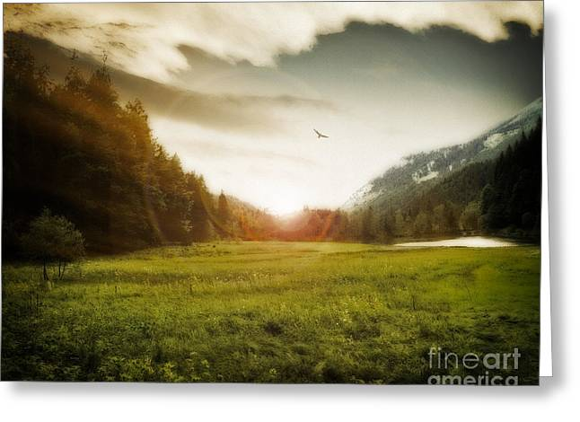 Sunset Greeting Cards Greeting Cards - The Golden Hour Greeting Card by Edmund Nagele