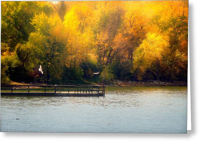 Lucinda Walter Greeting Cards - The Golden Hour Greeting Card by Lucinda Walter