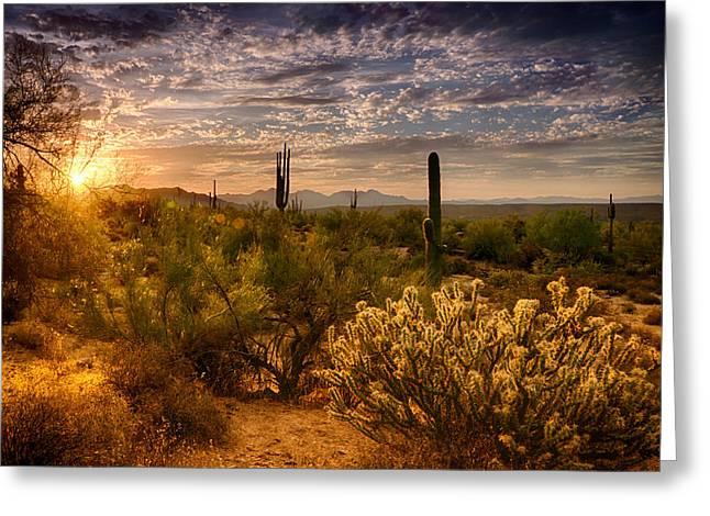 The Golden Southwest  Greeting Card by Saija  Lehtonen