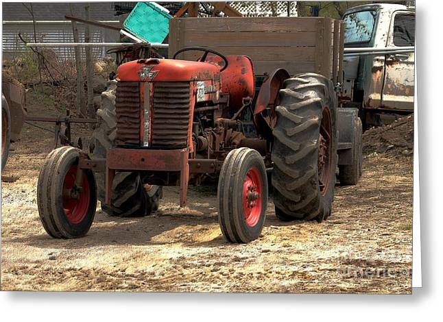 Shack Greeting Cards - The good old tractor Greeting Card by Claudia Mottram