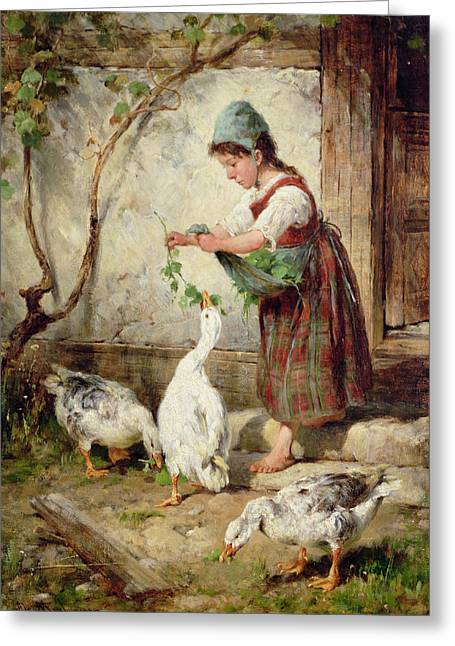 Ducklings Greeting Cards - The Goose Girl Greeting Card by Antonio Montemezzano