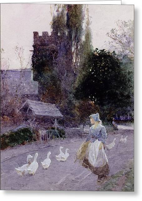 Church Street Greeting Cards - The Goose Girl Greeting Card by James Mackay