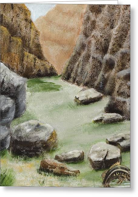 Salmon Paintings Greeting Cards - The Gorge Greeting Card by Susan Culver