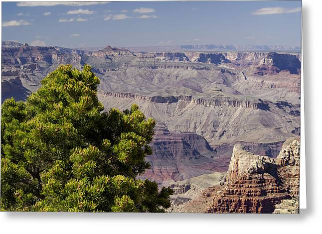 Authentic Inspiration Greeting Cards - The Grand Canyon Greeting Card by Marianne Campolongo