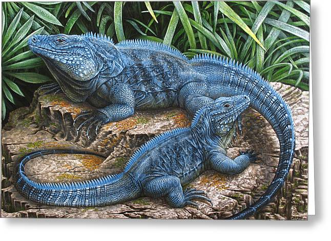 Nature Scene Paintings Greeting Cards - The Grand Cayman Blue Iguana Greeting Card by Cara Bevan