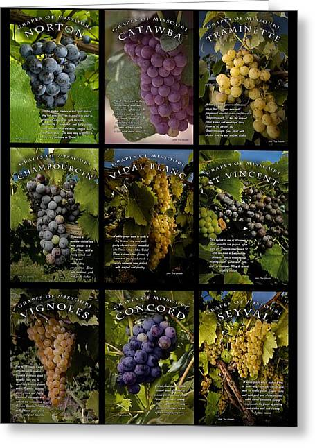 Traminette Greeting Cards - The Grapes of Missouri Greeting Card by Tony Carosella