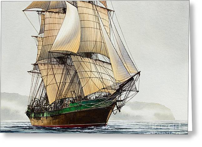Tall Ship Canvas Greeting Cards - The Great Age of Sail Greeting Card by James Williamson