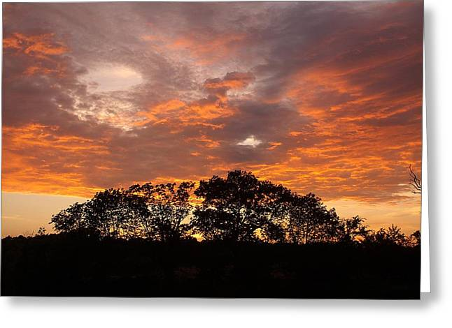 Unset Greeting Cards - The Great Fire Dragon Greeting Card by David Addams