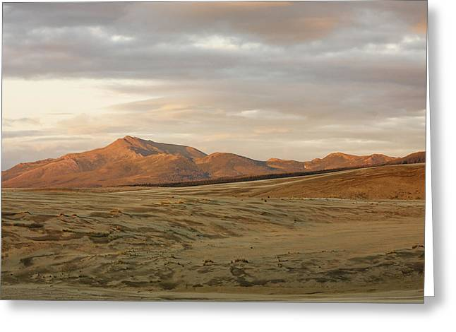 The North Greeting Cards - The Great Kobuk Sand Dunes Under An Greeting Card by Doug Demarest