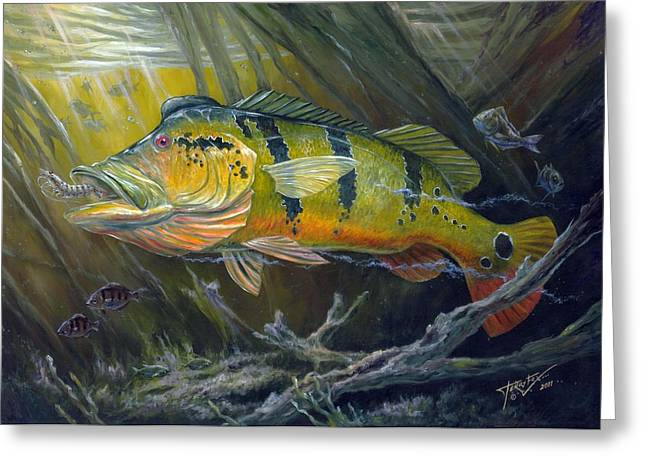 The Great Peacock Bass Greeting Card by Terry  Fox