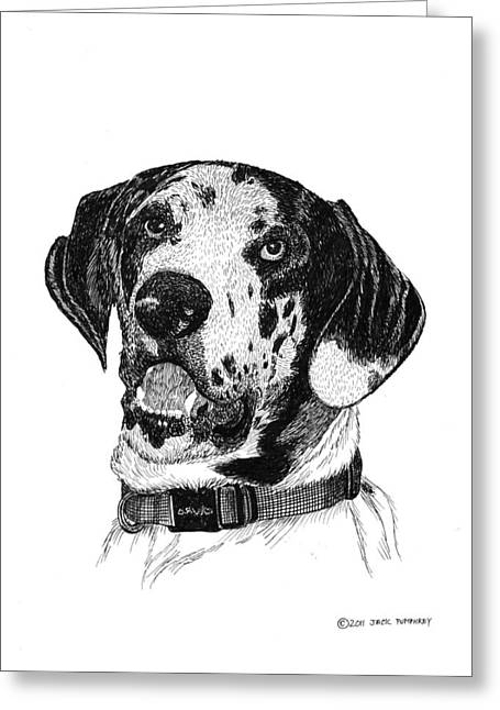 Breed Of Dog Drawings Greeting Cards - The Greatest Dane Greeting Card by Jack Pumphrey