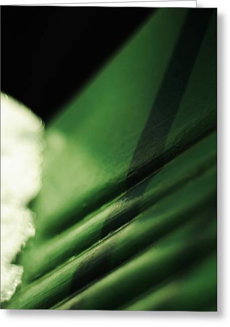 Emerald Green Abstract Greeting Cards - The Green Chair Greeting Card by Rebecca Sherman