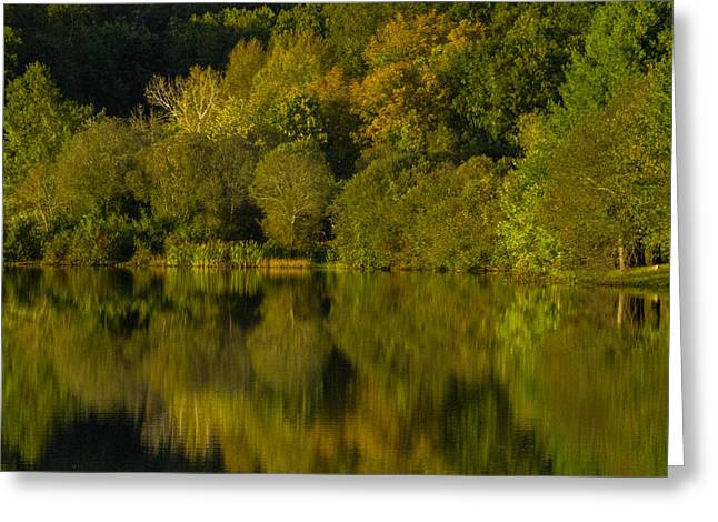 Reflection Of Trees In Water Greeting Cards - The Greens Of The Park Greeting Card by Karol  Livote