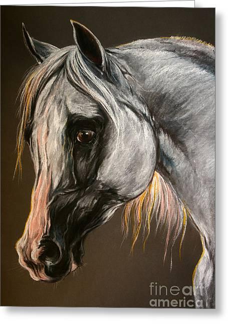 The Grey Arabian Horse Greeting Card by Angel  Tarantella