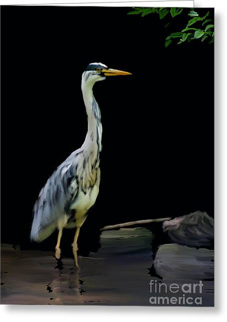 Grey Heron Greeting Cards - The Grey Heron Greeting Card by Brian Roscorla
