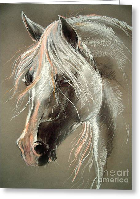Horse Pastels Greeting Cards - The Grey Horse Soft Pastel Greeting Card by Angel  Tarantella