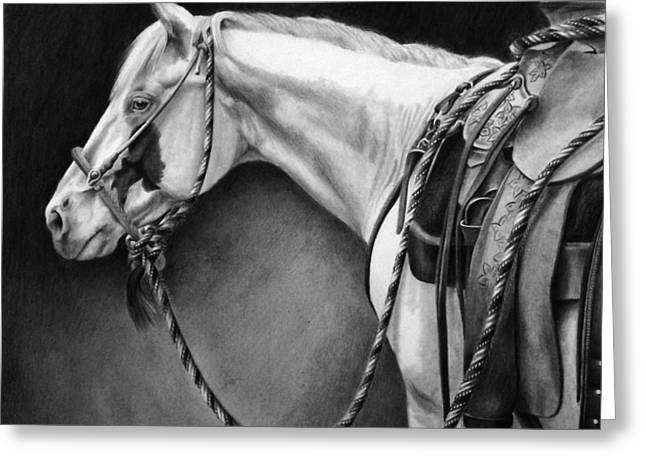 Quarter Horses Drawings Greeting Cards - The Hackamore Greeting Card by Maria DAngelo