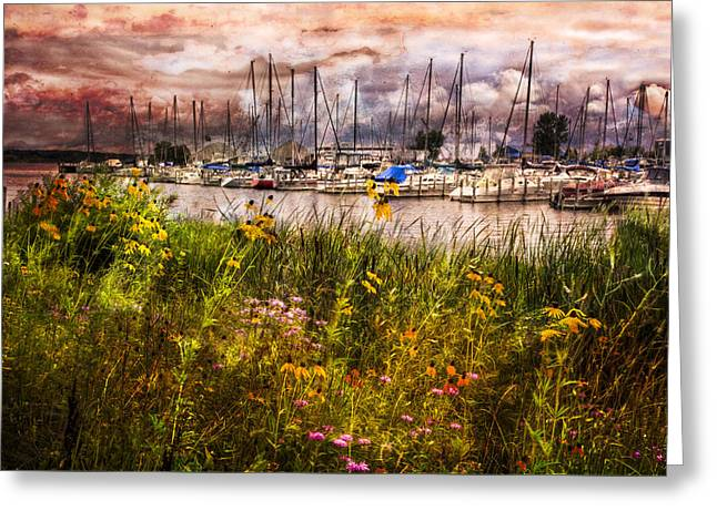 Sunrise On Beach Greeting Cards - The Harbor Greeting Card by Debra and Dave Vanderlaan