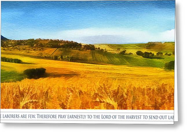 Bible Greeting Cards - The Harvest is Plentiful Greeting Card by Dale Jackson