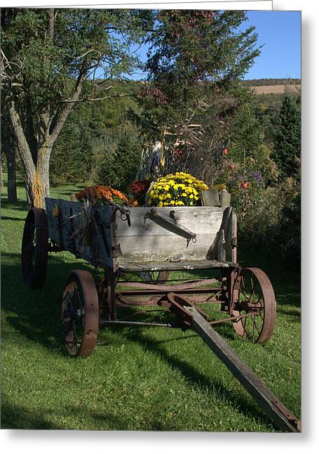 Wagon Jewelry Greeting Cards - The Harvest Wagon Greeting Card by BGR Photography
