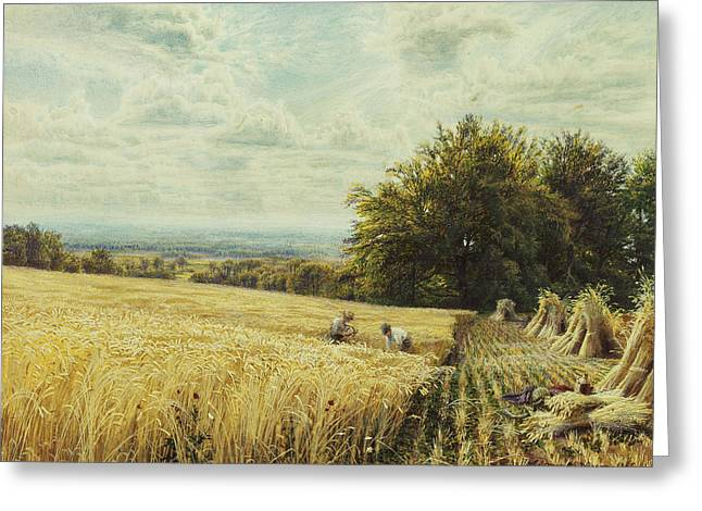 Bales Paintings Greeting Cards - The Harvesters Greeting Card by Edmund George Warren