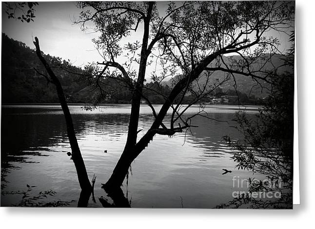 Overcast Day Greeting Cards - The haunted lake Greeting Card by Prajakta P