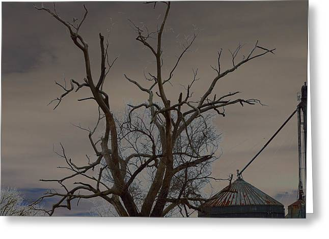 The Haunting Tree Greeting Card by Alys Caviness-Gober