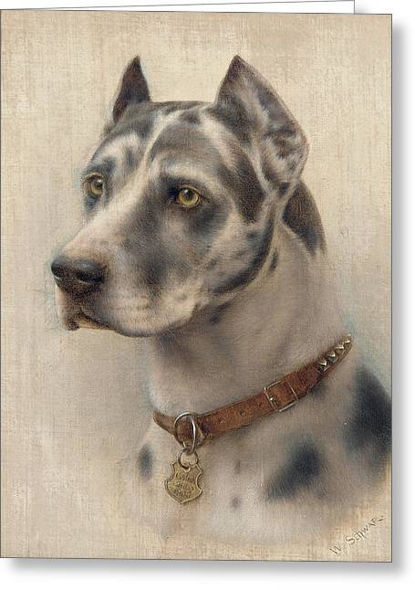 Husky Greeting Cards - The Head of a Doberman Greeting Card by Wilhelm Schwar