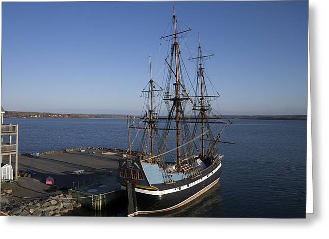 Sailing Ship Greeting Cards - The Hector At Hector Heritage Quay Greeting Card by Rob Huntley